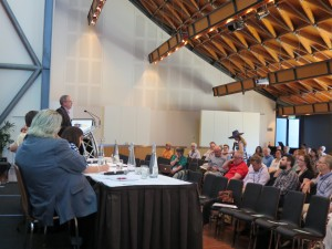 Day3 Conference, Plenary Panel discussion Nov2015 (8)